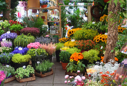 Fleuriste PARIS 03