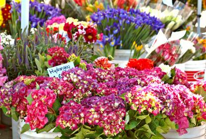 Votre fleuriste evreux livraison de fleurs evreux 27000 for Fleuristes et fleurs