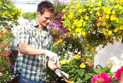 Votre fleuriste bastia livraison de fleurs bastia 20200 for Fleuristes et fleurs