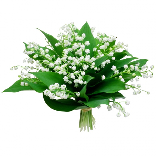 Bouquet 100 muguet for Envoyer bouquet