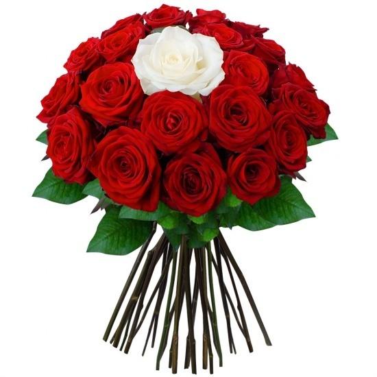 LEngagement de Rose rouge mariage Pendentifs bijoux boîte