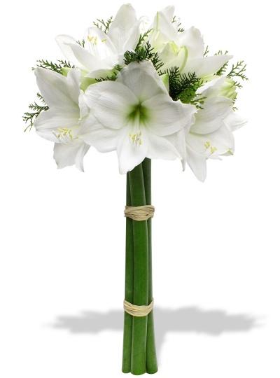 Amaryllis du fleuriste bouquet emotion amaryllis for Amaryllis fleuriste