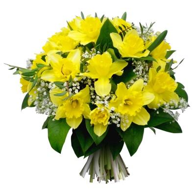 Les jonquilles du fleuriste bouquet jonquilles lumi re for Fleurs livrees