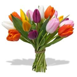 F te des grands m res 2016 livraison de fleurs domicile for Livraison tulipes