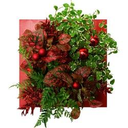 Tableau végétal de Noël Carré Rouge plaisir de Noël - 123fleurs