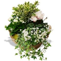 Les fleurs deuil Mémoire du coeur - 123fleurs