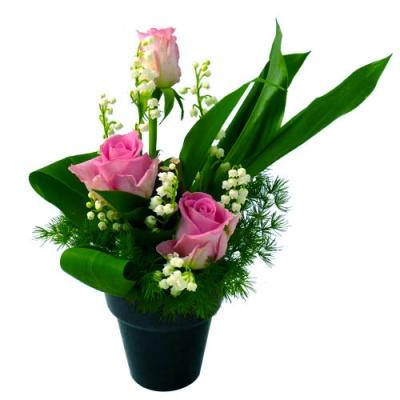 Composition muguet roses roses livraison en 4h for Muguet livraison domicile