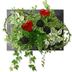 Tableau végétal Tableau d'Amour tendre - 123fleurs